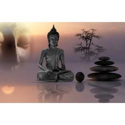 Soin Zen Shiatsu